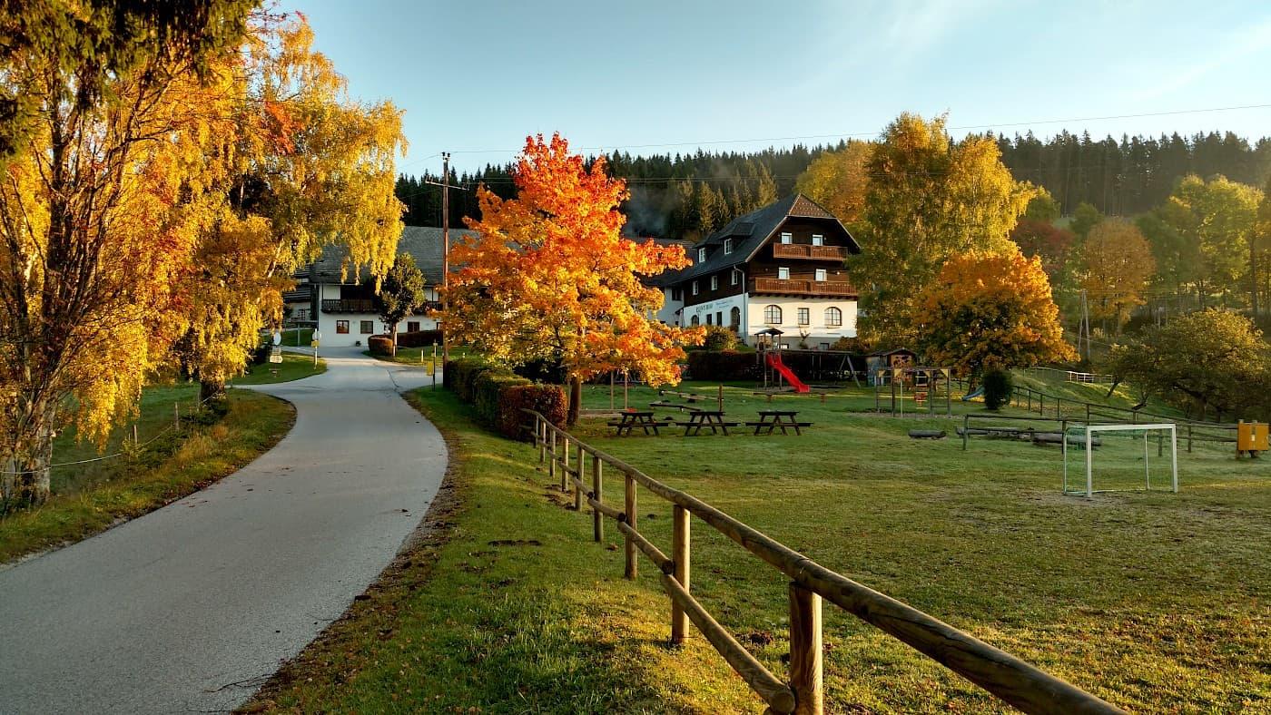Herbst am Ponyhof