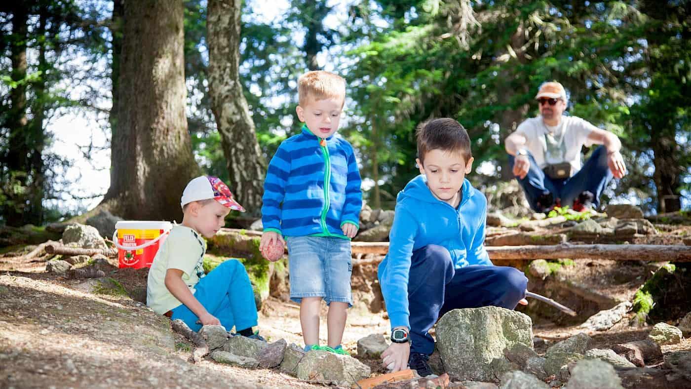 Waldkugelbahn bauen