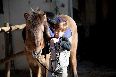 Reiten am Ponyhof
