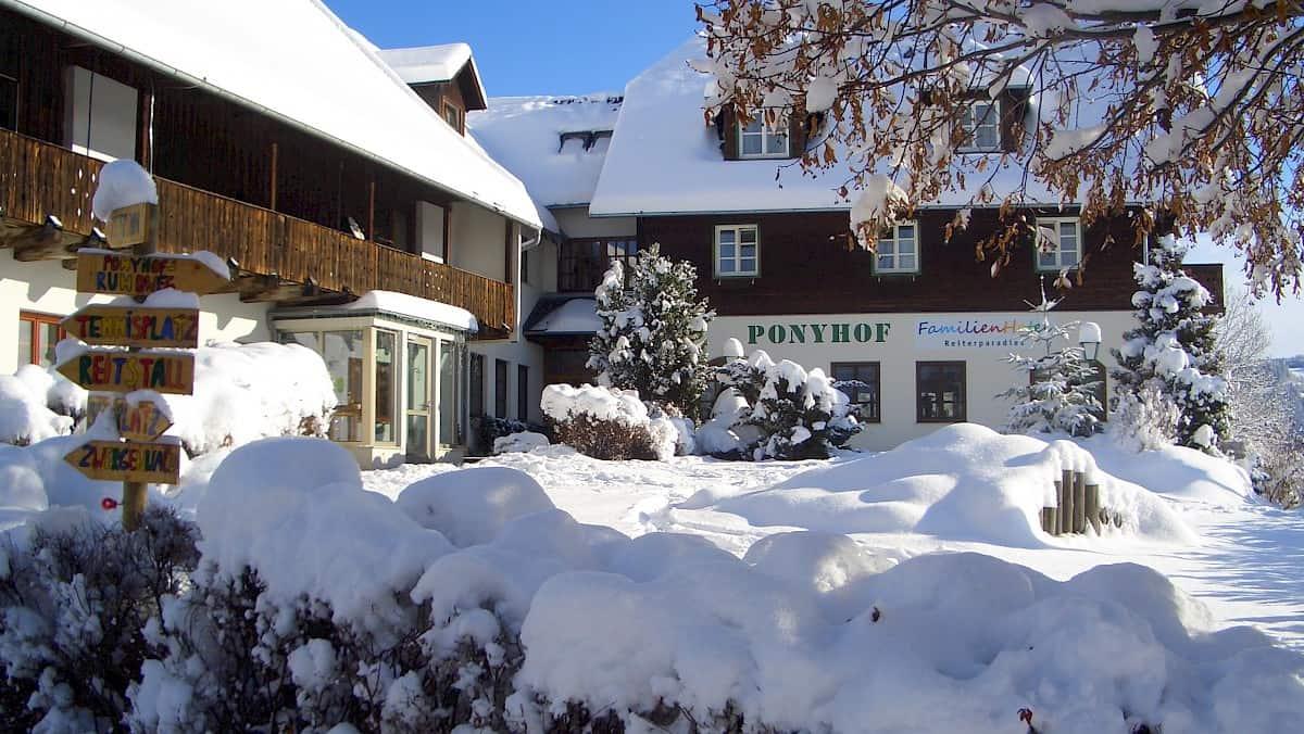 verschneiter Ponyhof